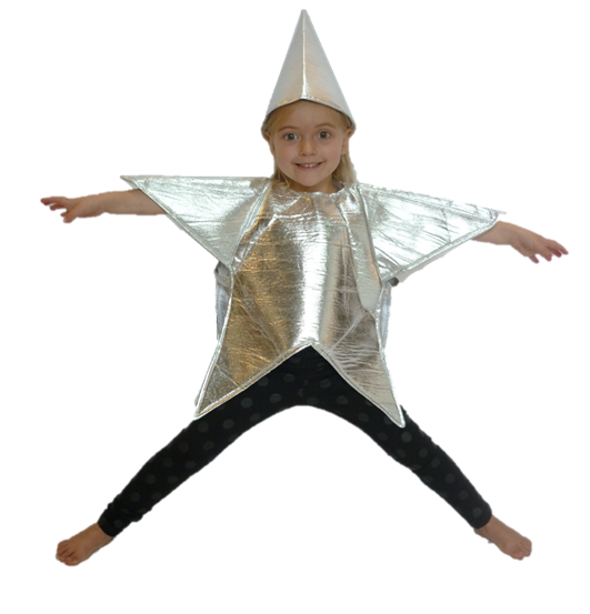 sc 1 st  JABTek & SILVER STAR CHILDRENS FANCY DRESS COSTUME